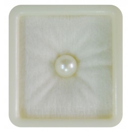 Pearl South Sea 4+ 2.6ct
