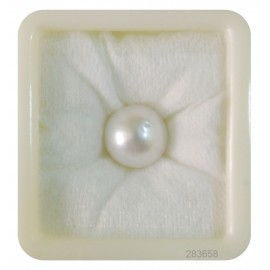 Natural Pearl South Sea 12+ 7.3ct