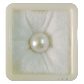 Natural Pearl South Sea 12+ 7.55ct