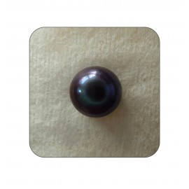 Lab Certified Pearl Gemstone 12+ 7.35ct